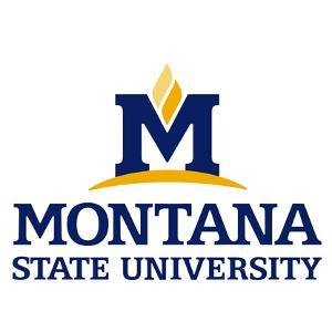 Montana State University